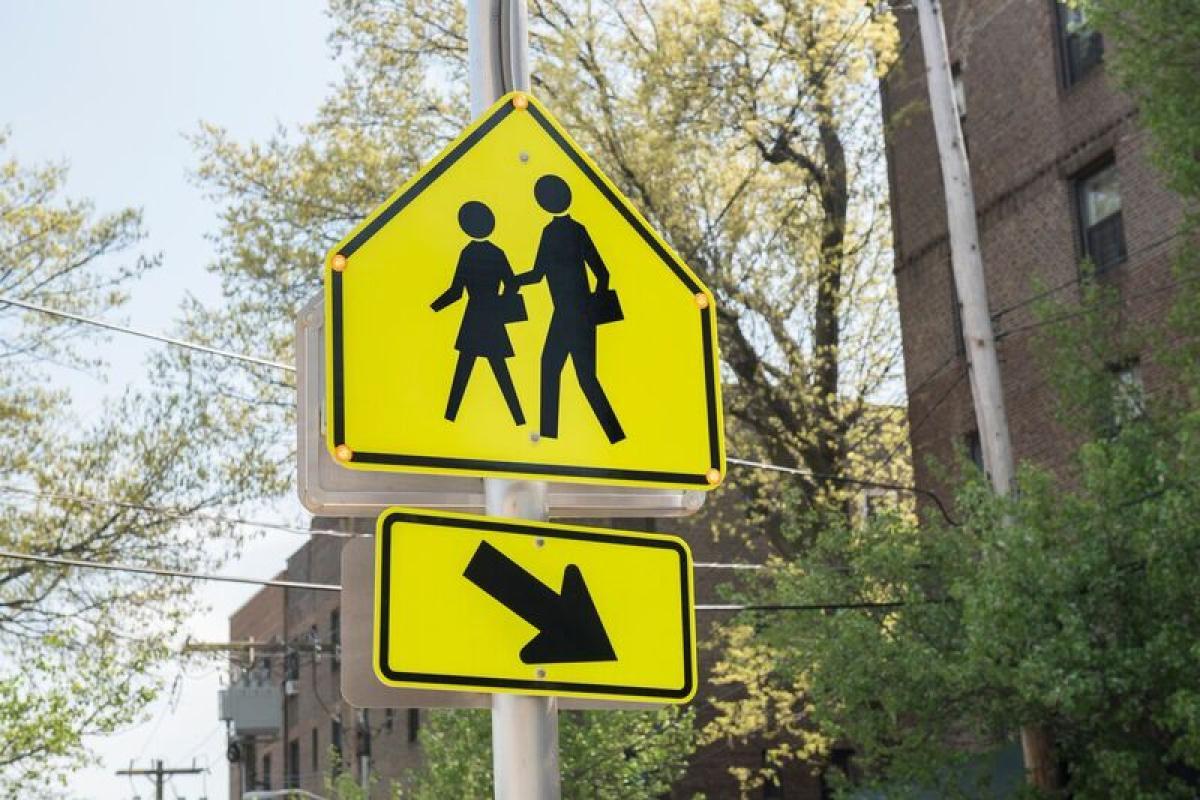 School Crossing Flashing Sign Pocantico Street (All photos credit - Margaret Fox)