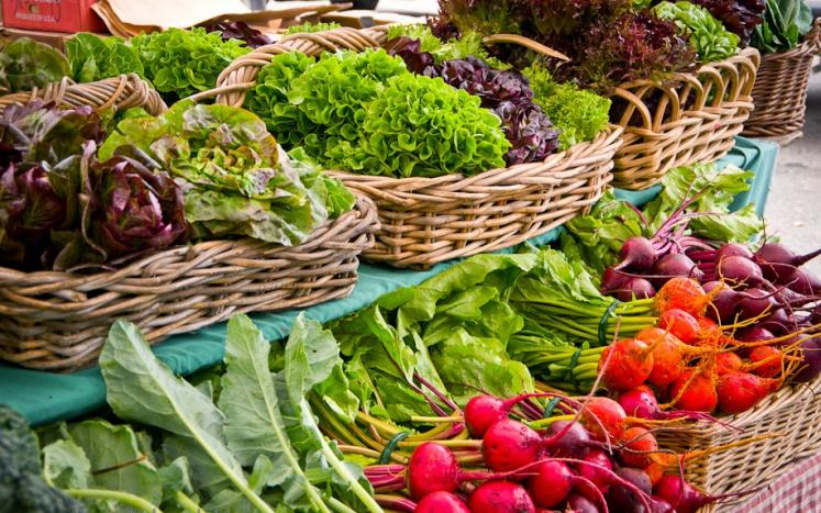 TaSH Farmers Market