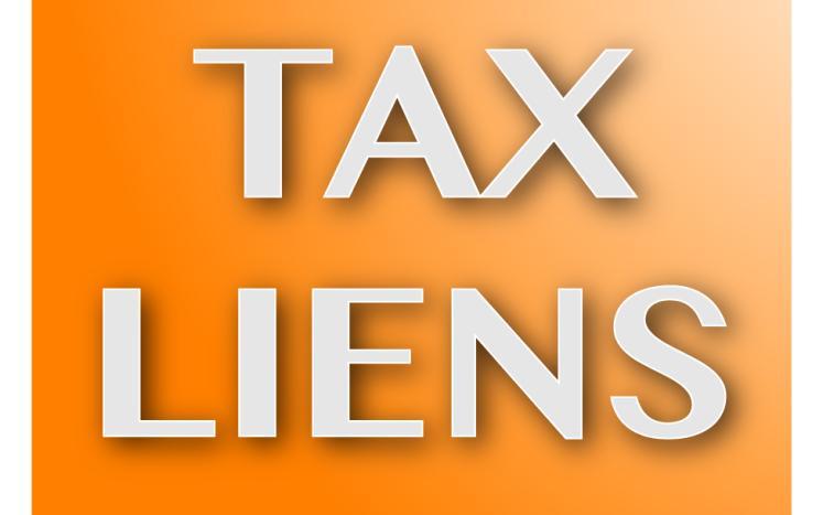2017- Tax Lien Sale